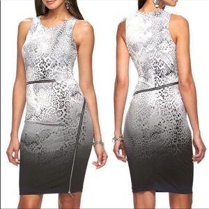 J-LO Zipper Sheath Dress/Ombré Animal Print Sz 2